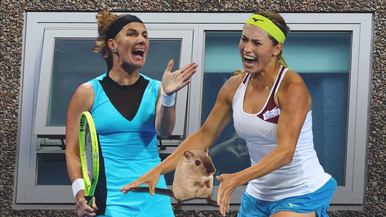 Теннисисты вшоке откарантина вАвстралии: бьют мячами вматрасы исражаются сгрызунами